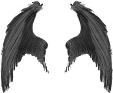 Demon wings png. Realistic x clipart download