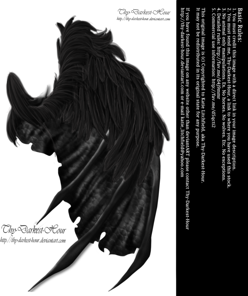 Demon wings png. Feathered by thy darkest