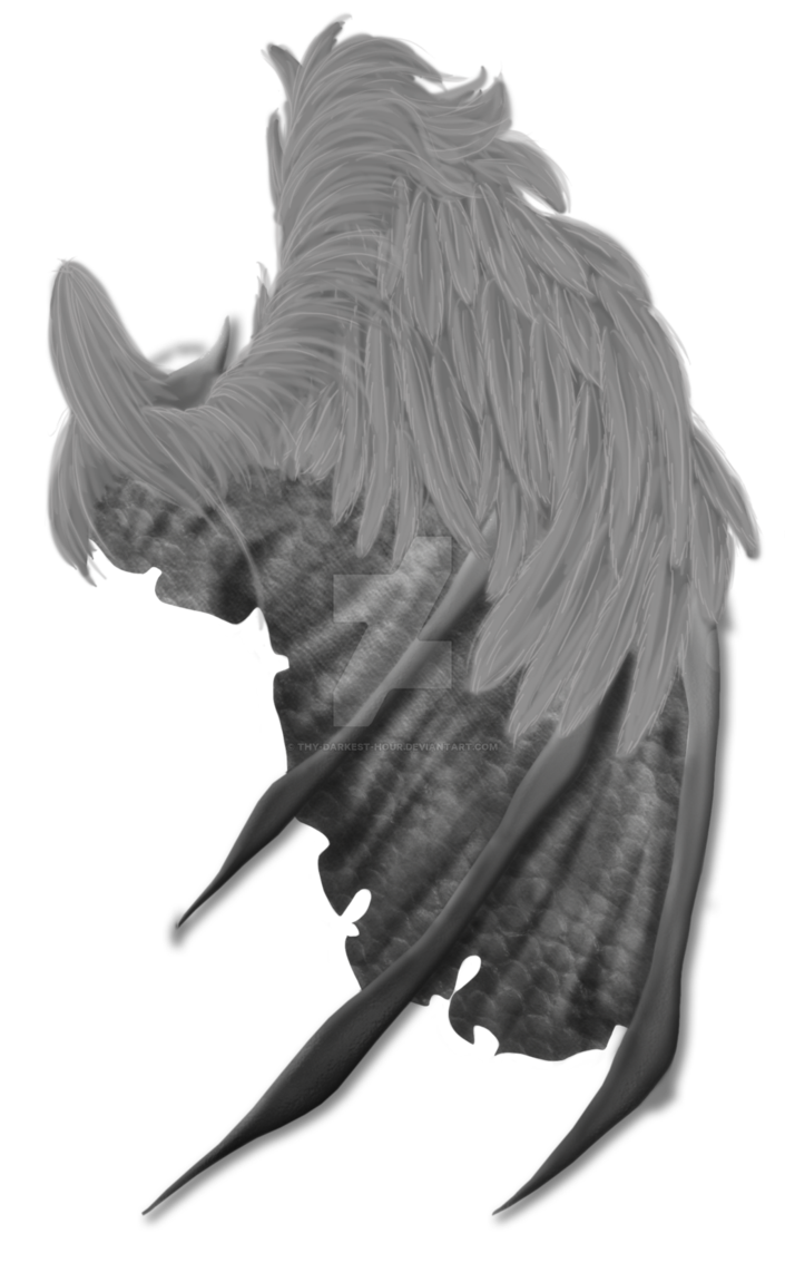 Demon wings png. Feathered premium psd by
