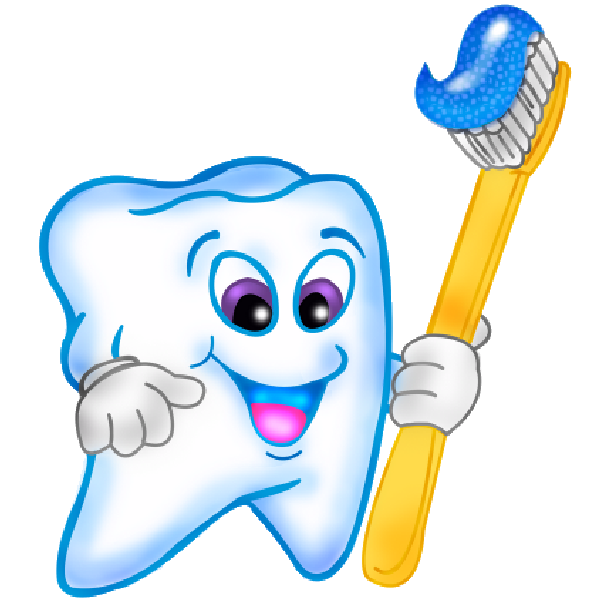 clean vector healthy tooth