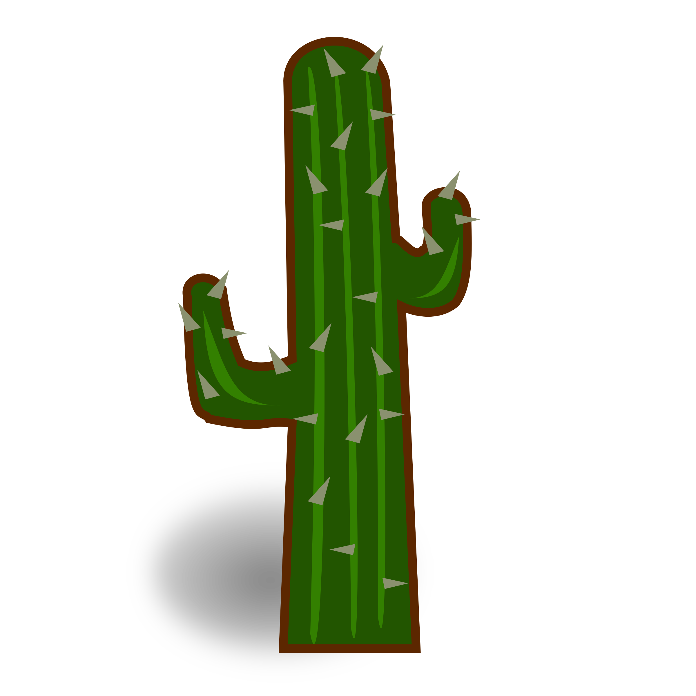 Cactus png clipart. Collection of high