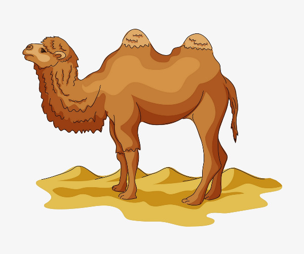 Desert clipart desert camel. Yellow leave the material