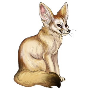 Desert fox png. Fennec images in collection