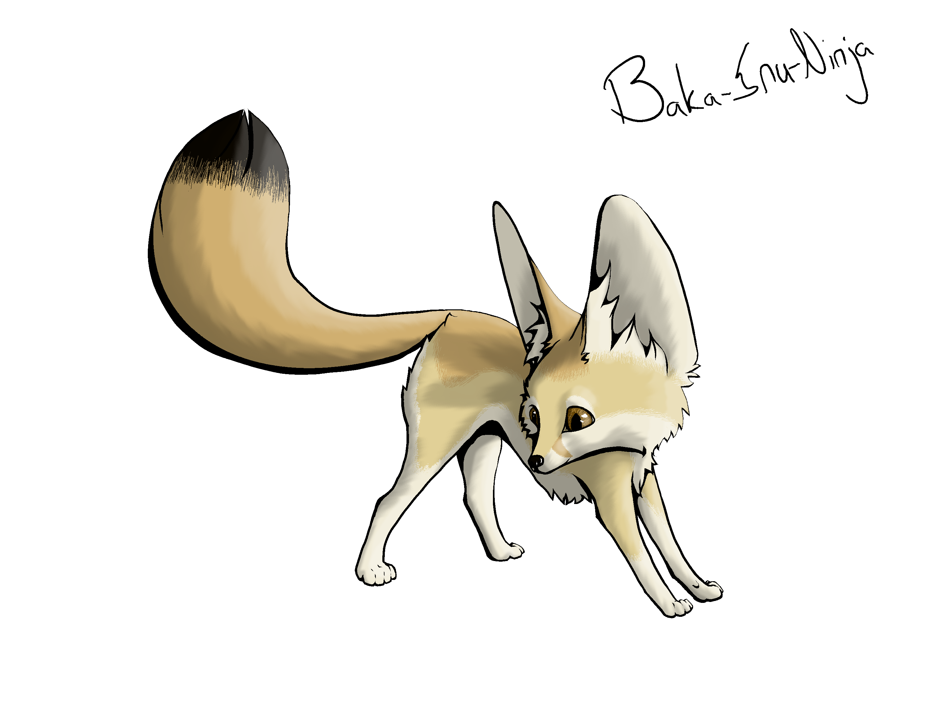Desert fox png. Collection of fennec