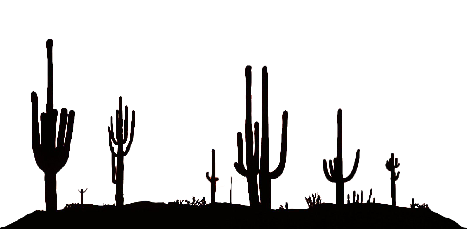 Desert silhouette png. Dylan james auto transport