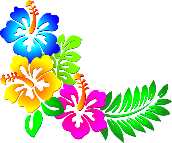 Flowers borders png transparent. Hawaiian clipart border line vector black and white stock