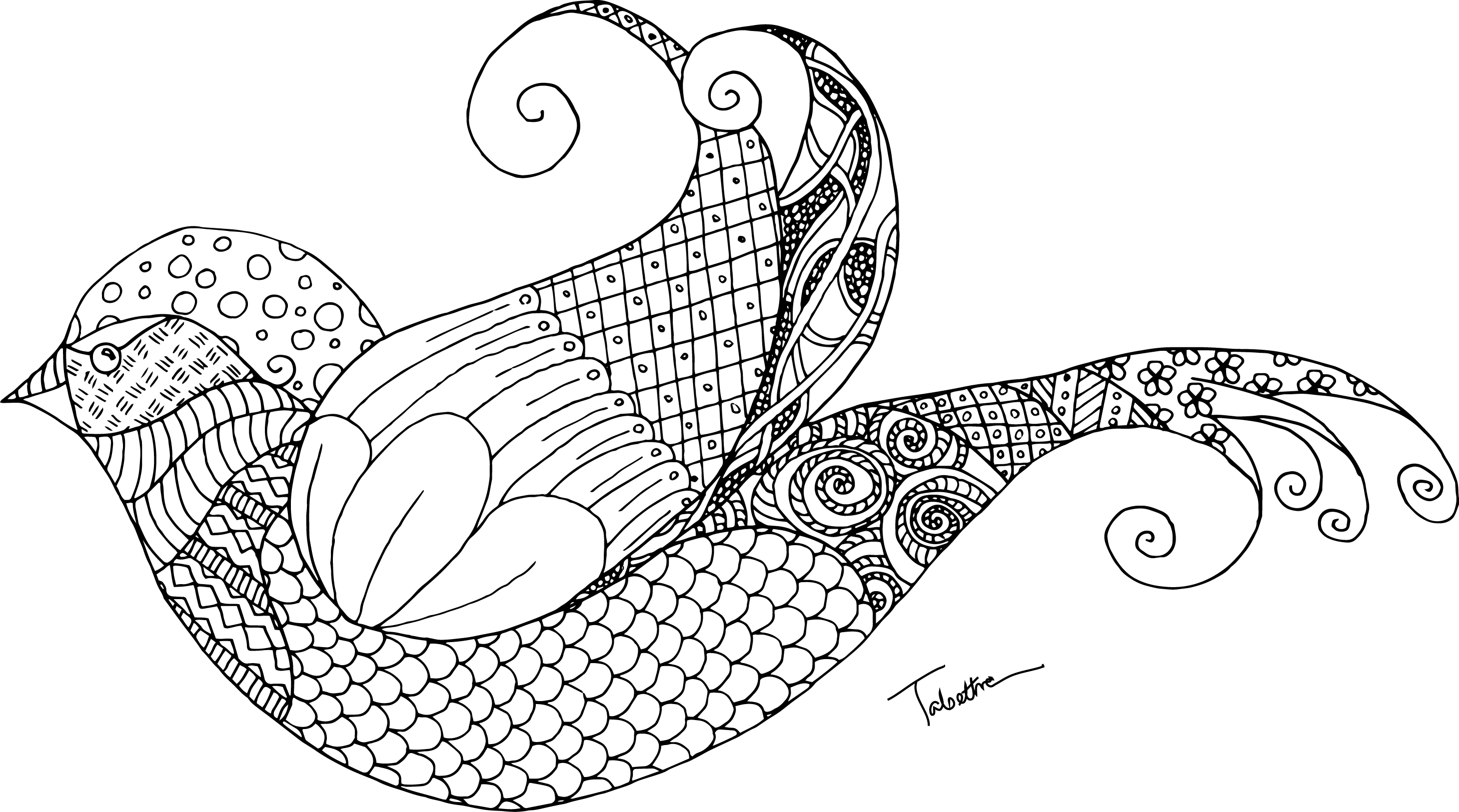 Tangle Drawing Zentangle Transparent & PNG Clipart Free Download