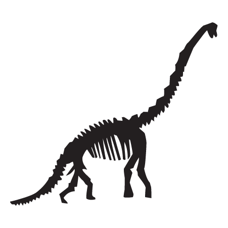 Dinosaur bone png. Diplodocus fossil wall quotes