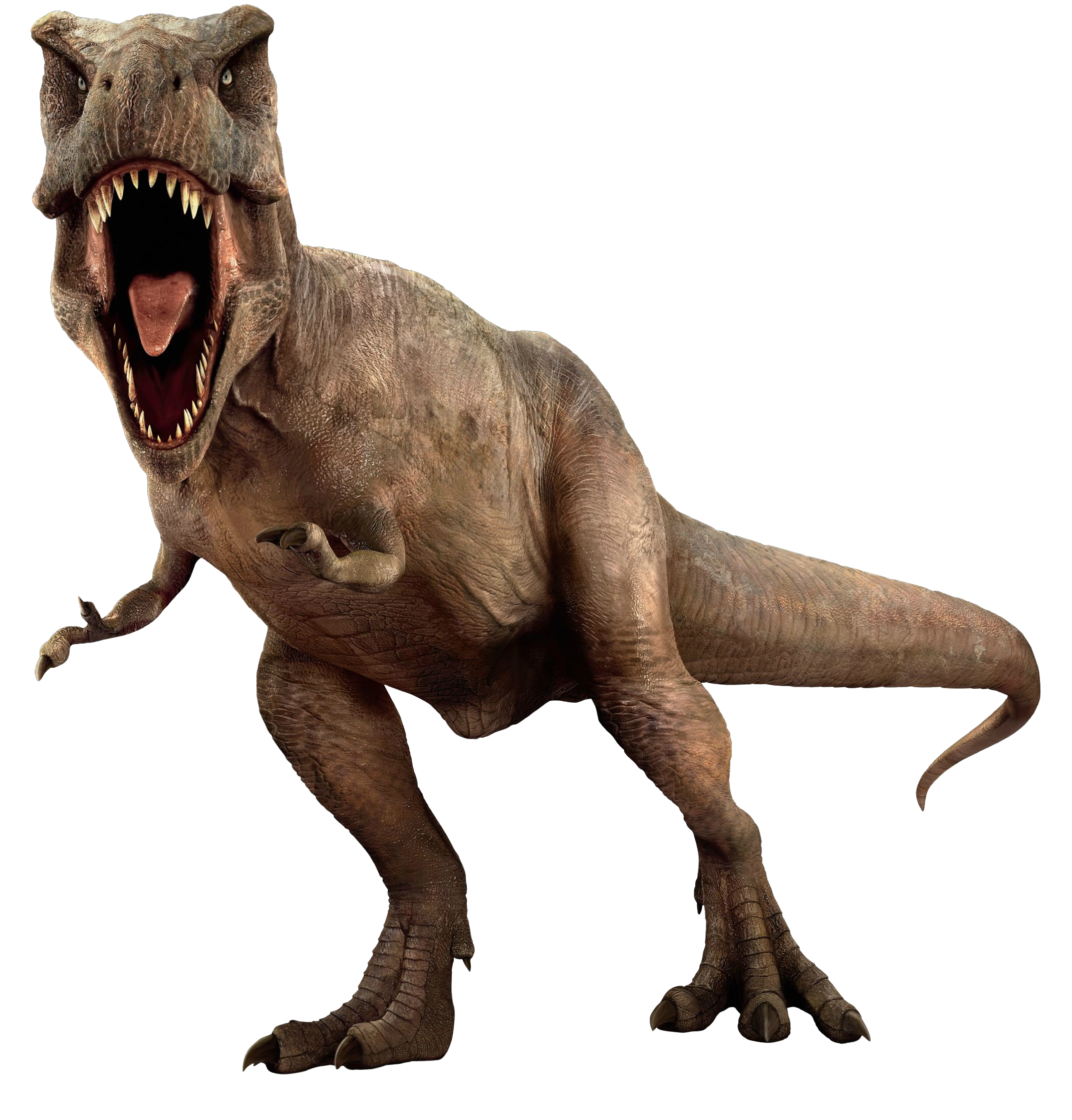 Dinosaur png. Images dino free download