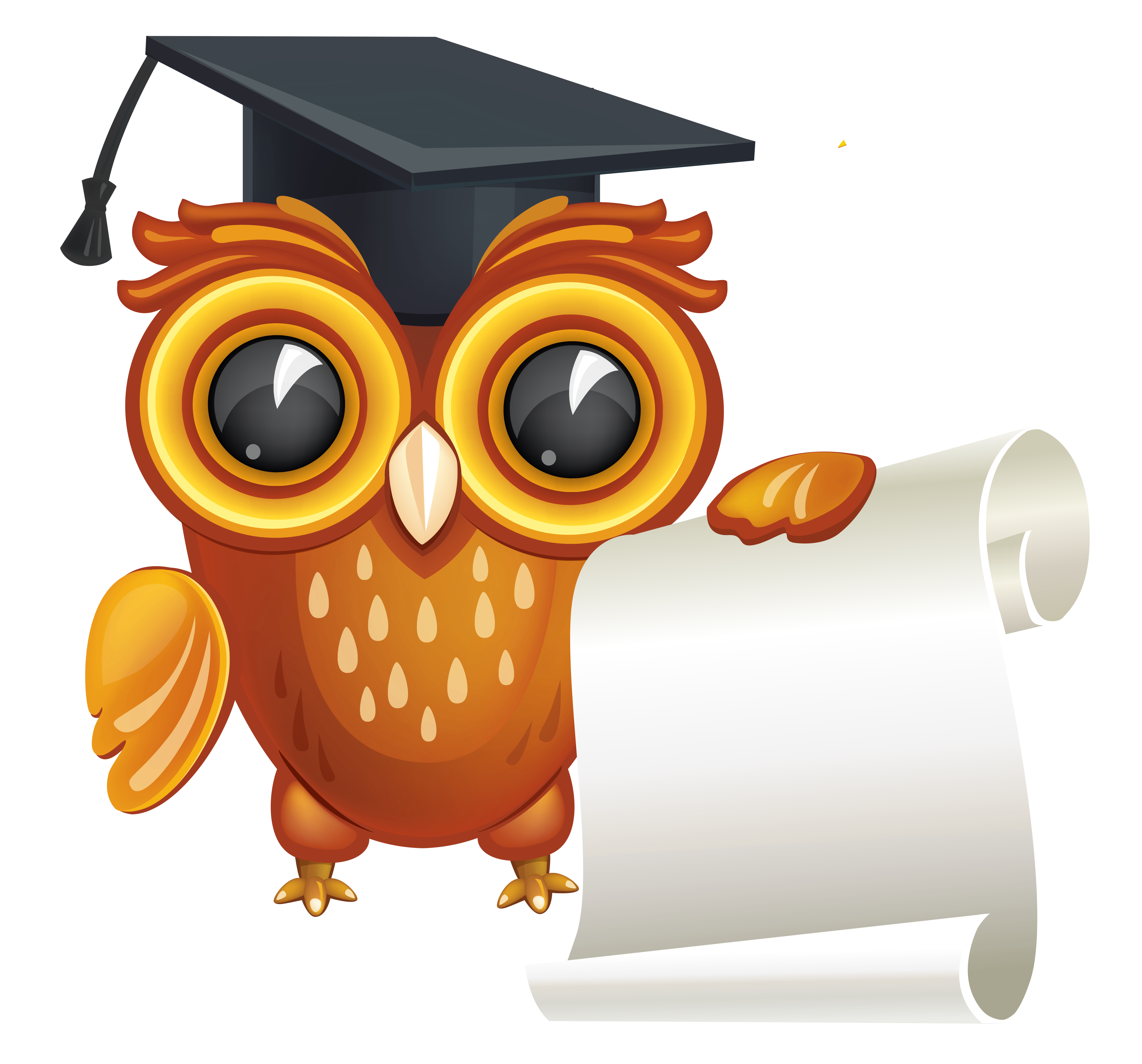 Diploma clipart transparent background. Owl with png image