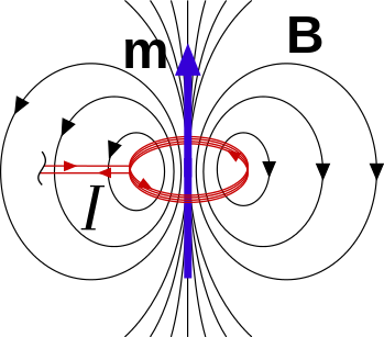 Vector magnet magnetic moment. Why are electric dipoles