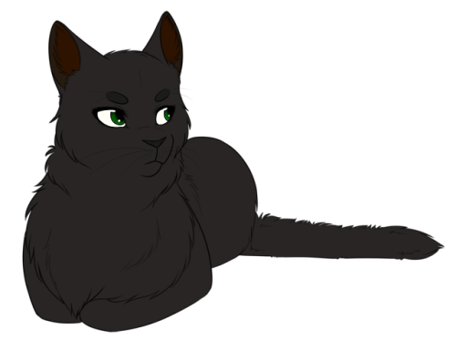 Discord drawing cat. Also i d totally