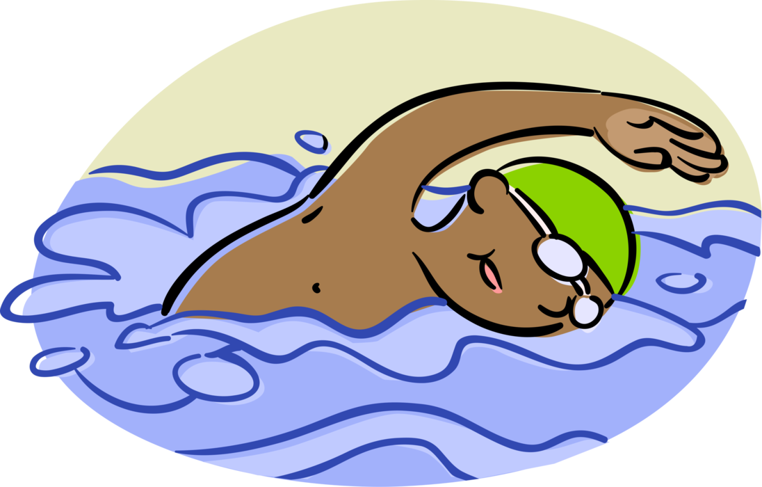 Diving clipart competitive swimming. Swimmer swims backstroke vector