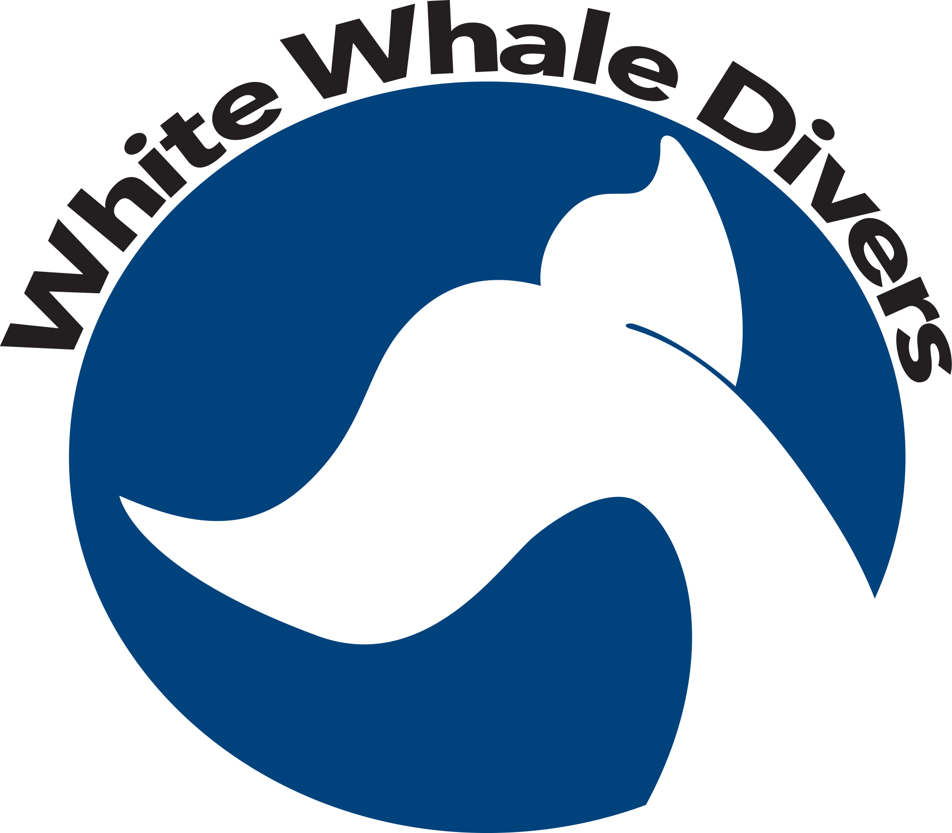 Scuba center in hurghada. Diving clipart whale graphic free library
