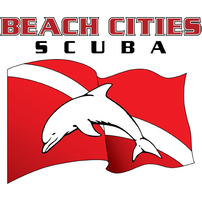 Beach cities scuba centers. Diving hawk png image freeuse stock