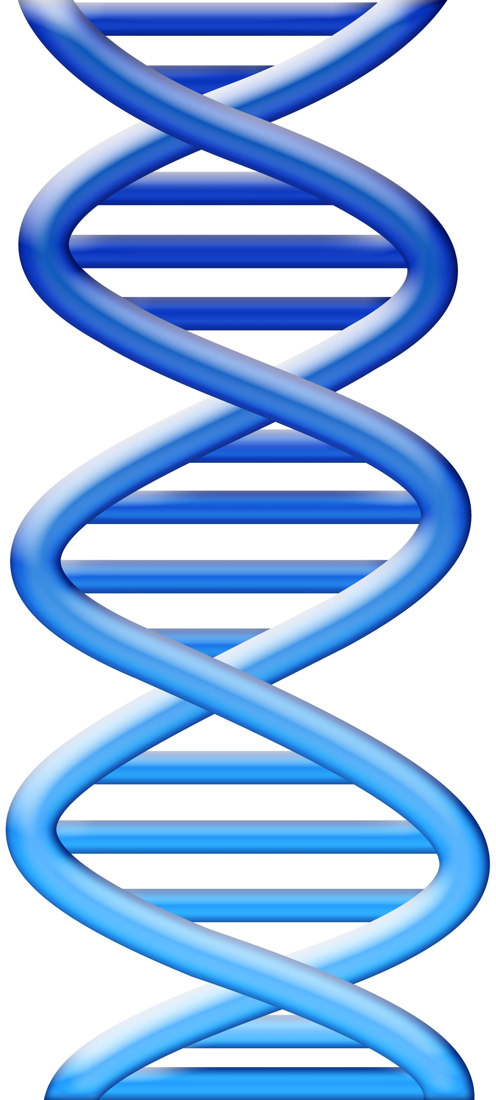 Dna clipart blue. Helix backgrounds hd top