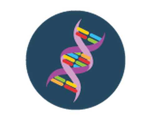 Dna clipart blue. Science icons yellow and
