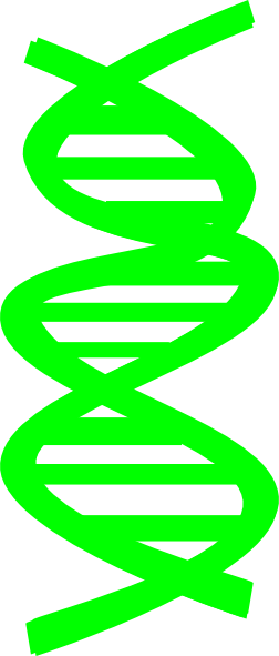 transparent dna royalty free