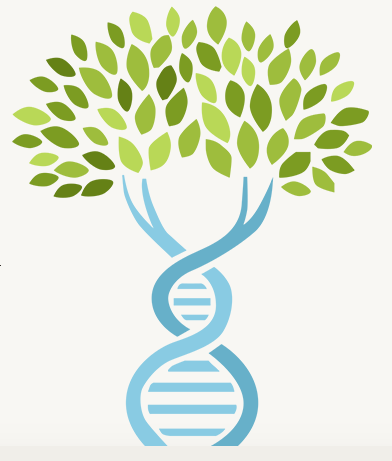 Dna clipart tree. Ancestrydna is million people
