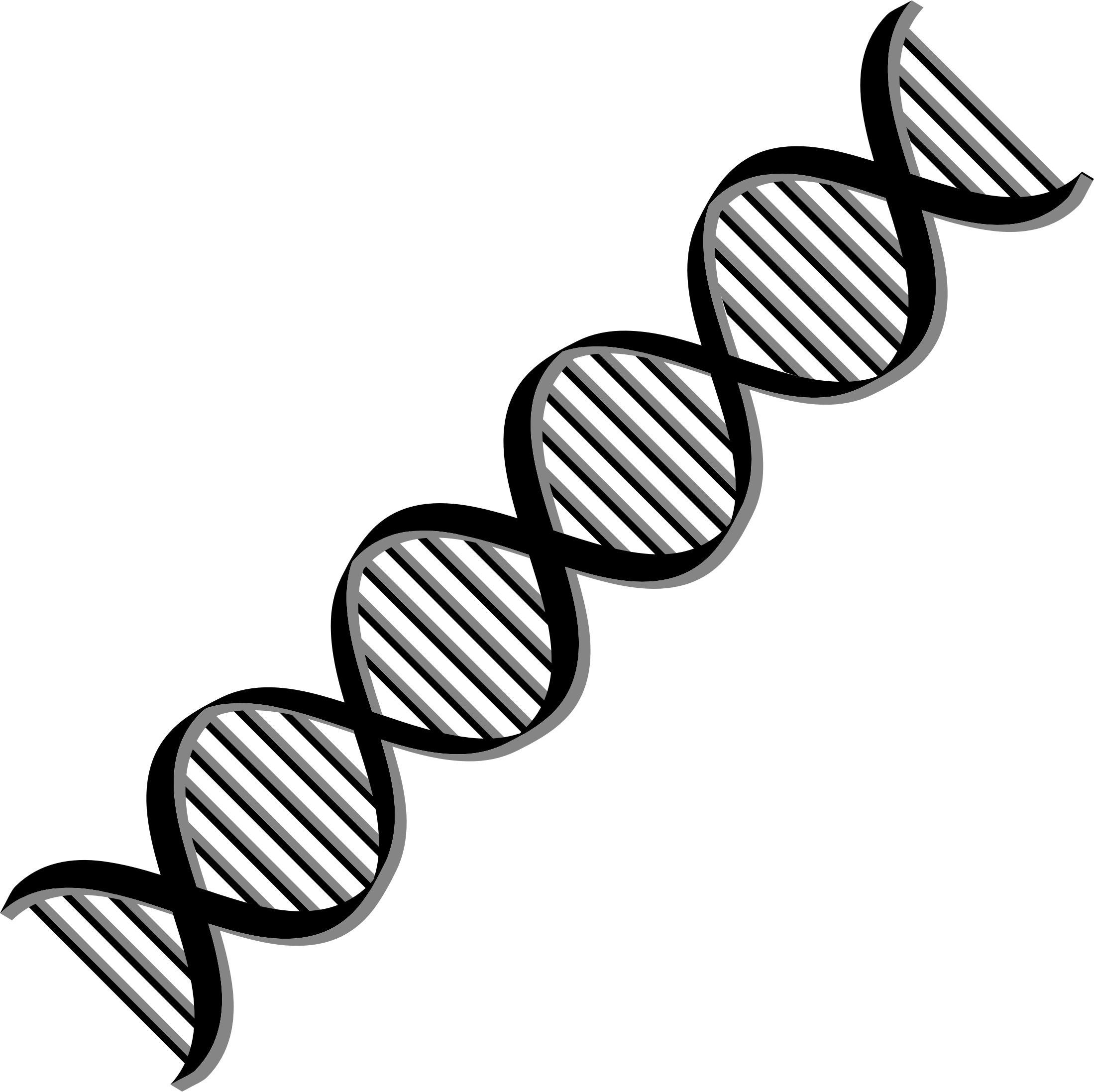 Dna helix png. Variation icons free and