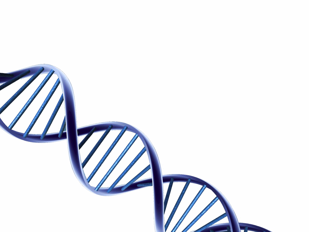 Png dna. Hd images pngio