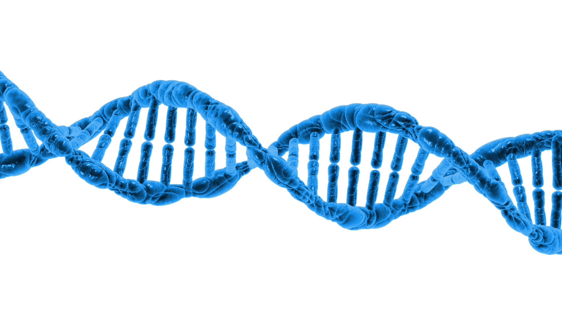 String double helix transparent. Dna png png royalty free