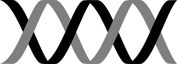 Dna svg horizontal. Collection of free helices