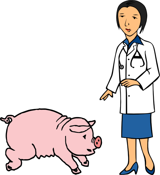 Doctor clipart vector. And pig clip art