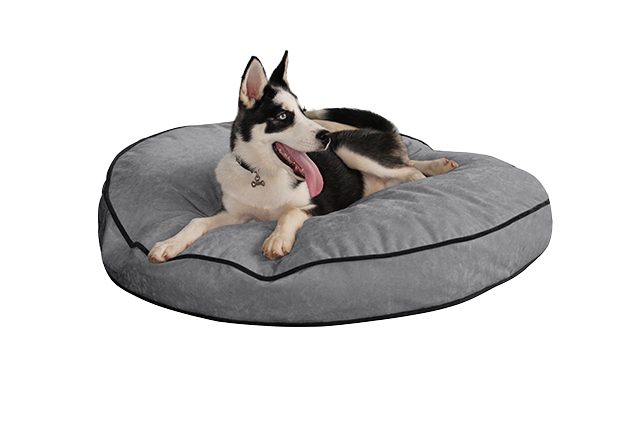Dog bed png. Pup iq smart round