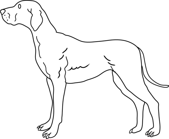 dog clip art line drawing