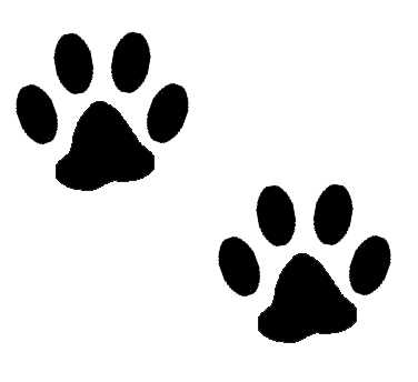 Graphics by ruth dogs. Footprint transparent dog svg freeuse