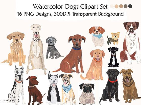 Dog clip art domestic dog. Watercolor dogs clipart set