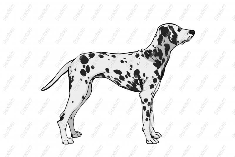Clipart . Dog clip art realistic image black and white download