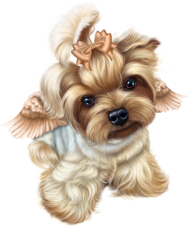 Yorkie clipart pet. Pin by slava on