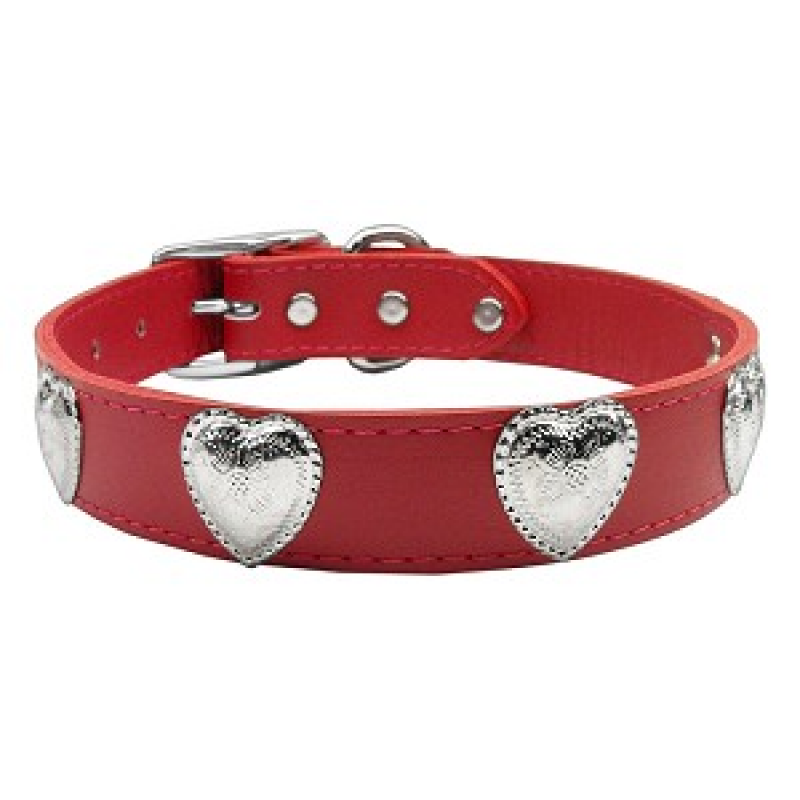 Dog collar png. Beautiful leather with silver