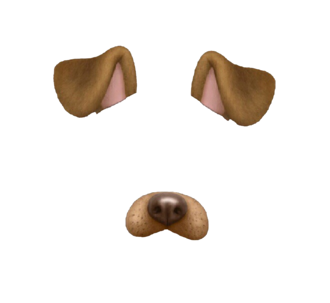 Puppy snapchat cat we. Dog ears png picture transparent