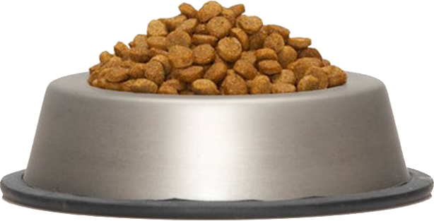 bowl of dog food png
