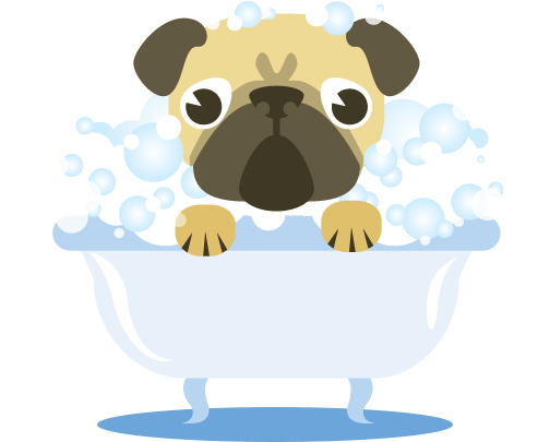 bath drawing dog