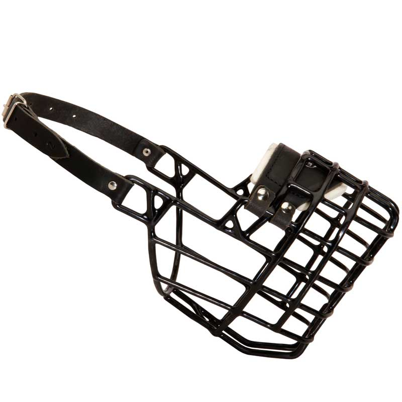 Dog muzzle. Wire cage rottweiler with