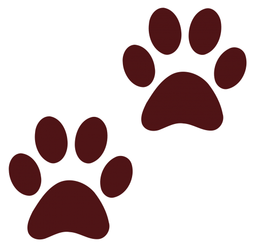 Paw print png image. Footprint transparent dog black and white