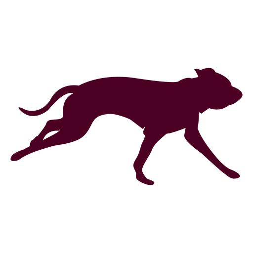 Dogs vector group. Dog running sequence transparent