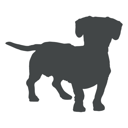 Poodle svg transparent. Dog silhouette playing png