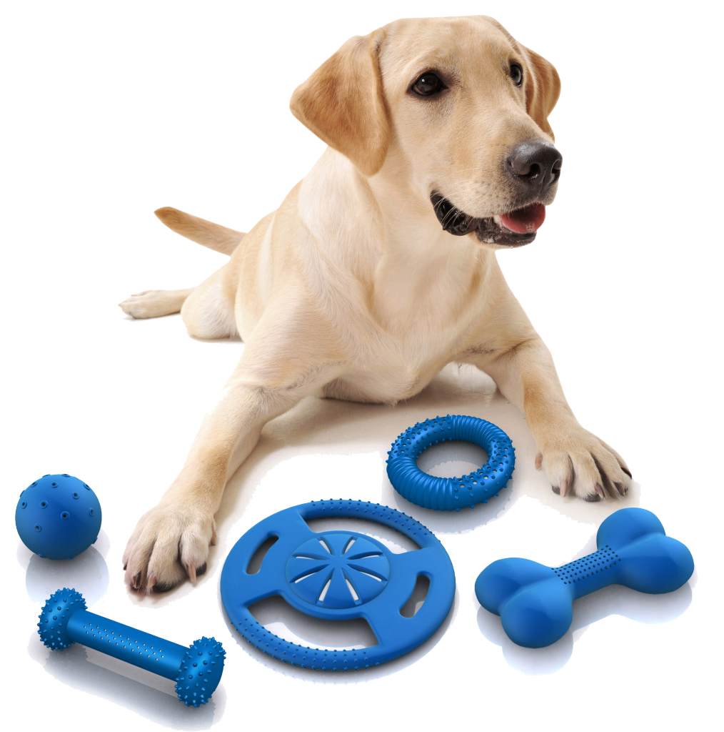 Dog toy png. Foxy toys for crate