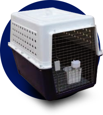 dog travel crate png