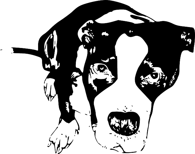 Pitbull puppy at getdrawings. Doggy drawing svg library library