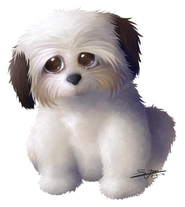 Doggy drawing maltese. Commission shih tzu dog