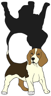 Dogs clipart beagle. Beanie s tag you