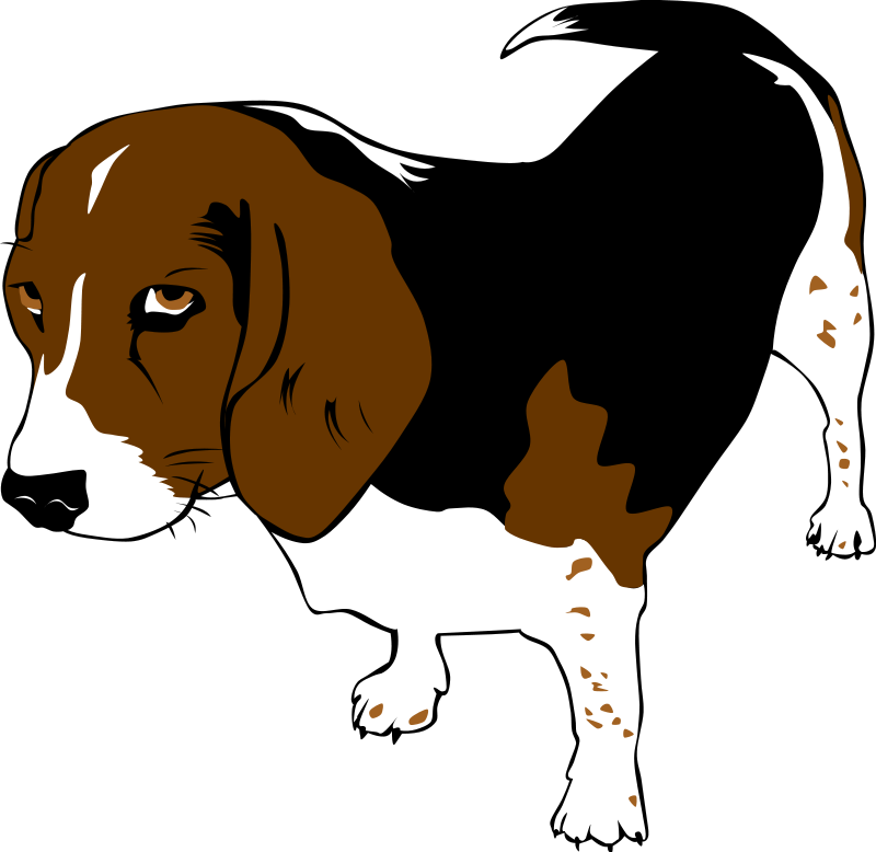 Dogs clipart beagle. Free clip art dog