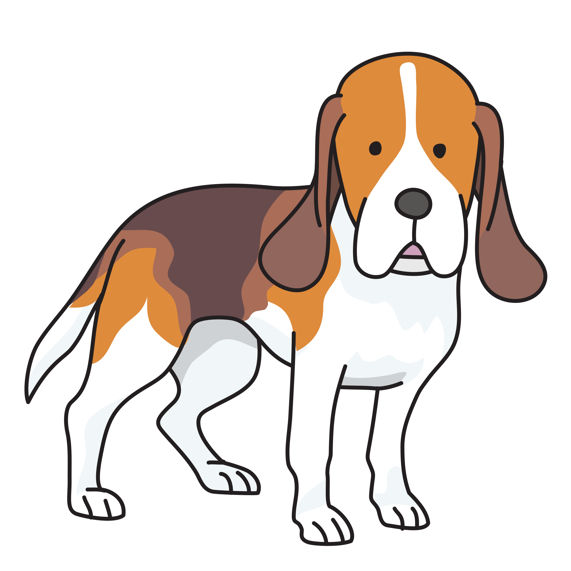 Dogs clipart beagle. Dog big image png
