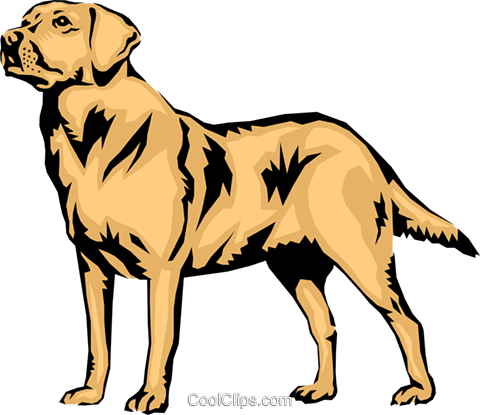 Dogs vector chesapeake bay retriever. Clipart at getdrawings com